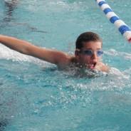 Championnat régional de natation